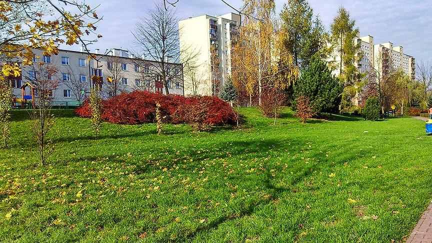 Park Czechów