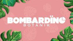 Bombardino Botanik logo