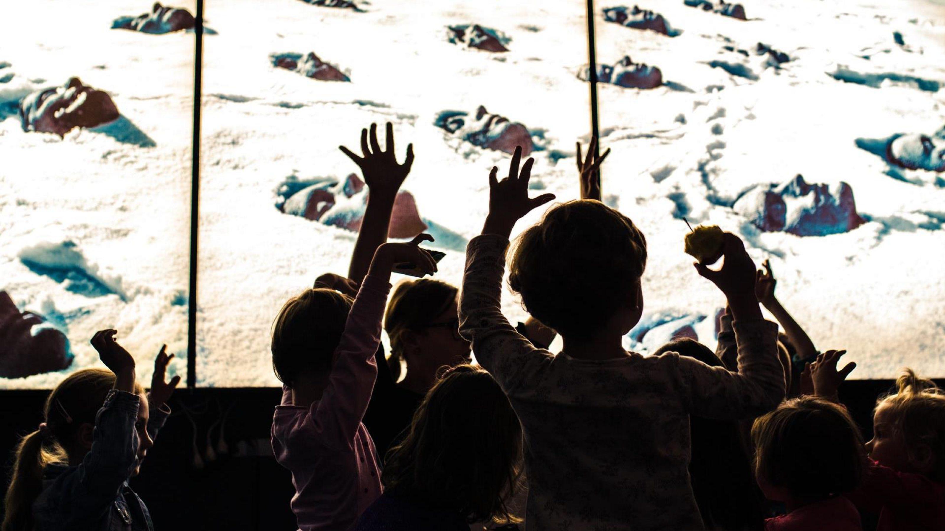 Wystawa interaktywna dla dzieci