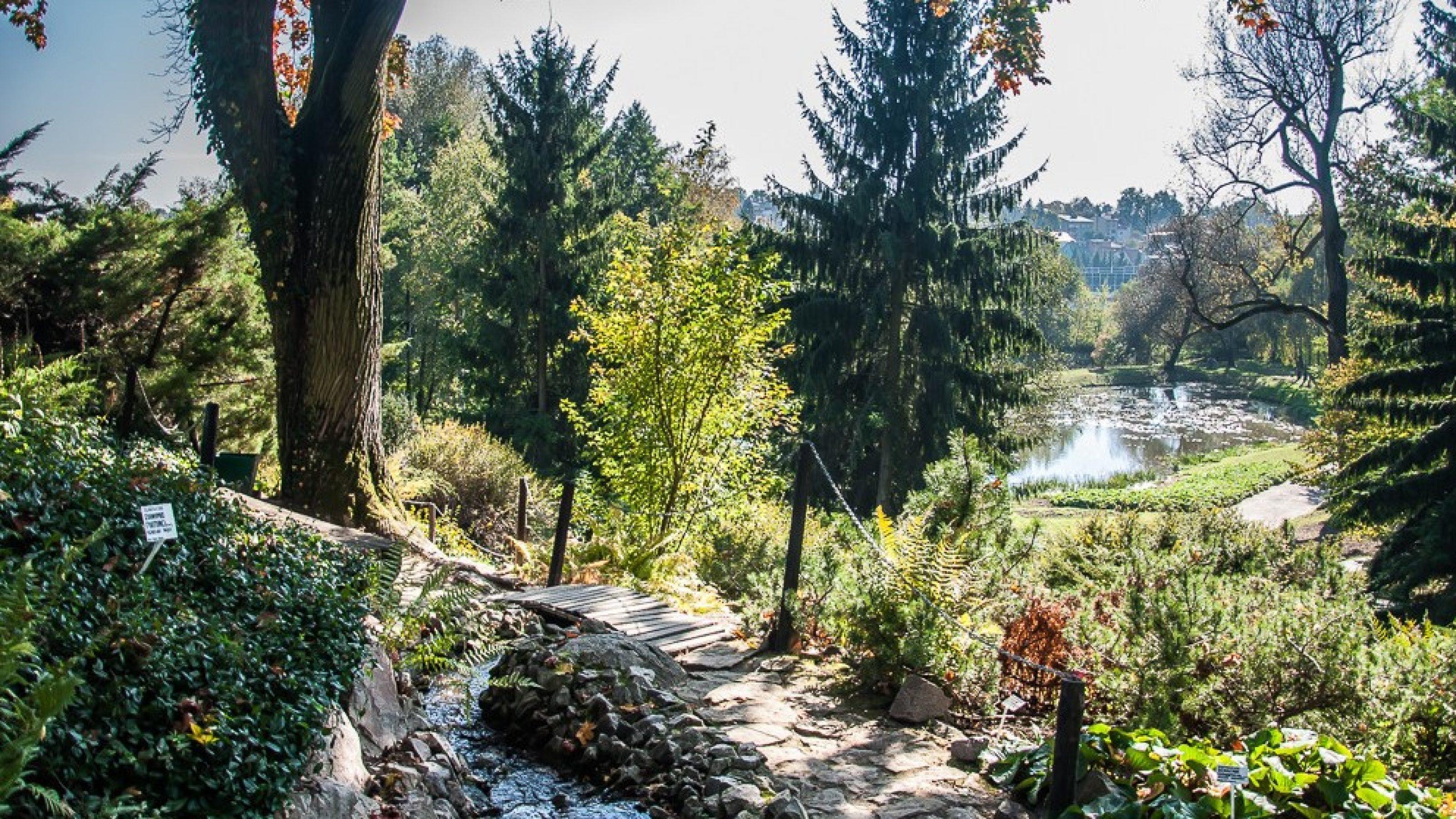 Ogród Botaniczny UMCS